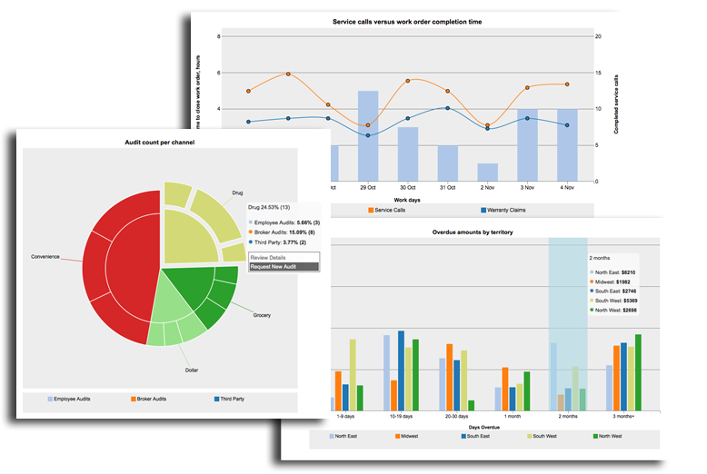 reports and visualization for enterprise mobile apps